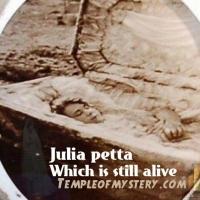 جوليا بيتا : العروس الإيطالية